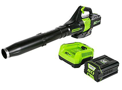 battery powered leaf blower reviews